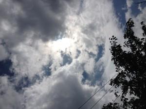 solar oven 010