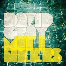 Music Review: Mutineers by David Grey