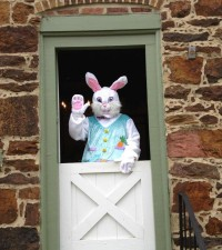 Have Brunch With The Bunny at Discovery Museum