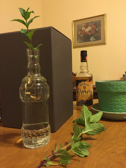 Mint for The Philly Smash using Jim Beam