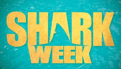 Celebrate #SharkWeek on #FiosPhilly
