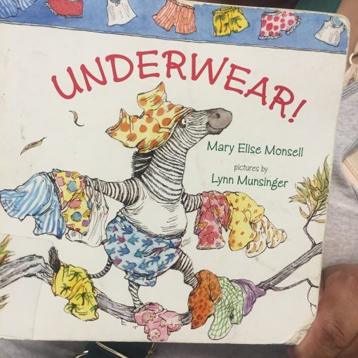Picture Books to Celebrate National Underwear Day