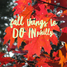 Fall things we are looking forward to